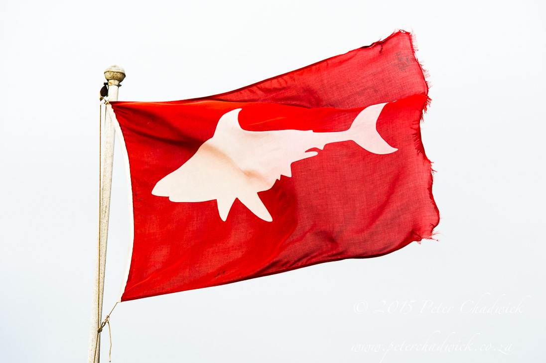 Shark Spotters Flag_©PeterChadwick_AfricanConservationPhotographer