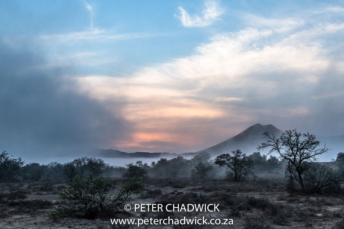 Mist over the Karoo_©PeterChadwick_AfricanConservationPhotographer